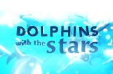 """SIC avança com """"Golfinhos com as Estrelas"""""""