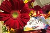 """Veja as imagens do primeiro episódio de """"Rainha das Flores"""" [Fotos]"""
